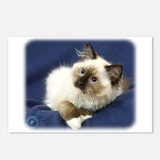 Ragdoll Cat 9W082D-011 Postcards (Package of 8)