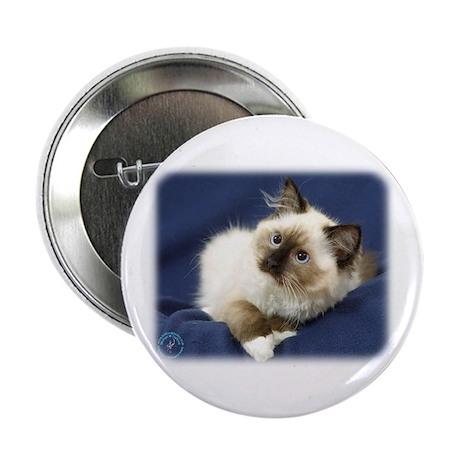 "Ragdoll Cat 9W082D-011 2.25"" Button"