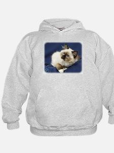Ragdoll Cat 9W082D-011 Hoodie