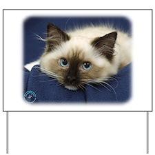 Ragdoll Cat 9W082D-020 Yard Sign