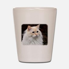 Ragdoll Cat 9W082D-020 Shot Glass