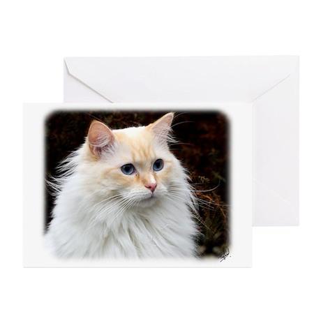 Ragdoll Cat 9W082D-020 Greeting Cards (Pk of 20)