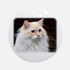 Ragdoll Cat 9W082D-020 Ornament (Round)