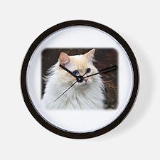 Ragdoll Cat 9W082D-020 Wall Clock