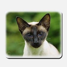 Siamese Cat 9W027D-131 Mousepad