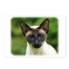Siamese Cat 9W027D-131 Postcards (Package of 8)