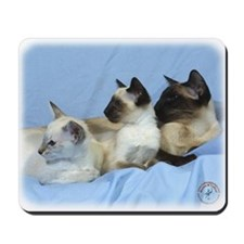 Siamese Cat 9W055D-074 Mousepad