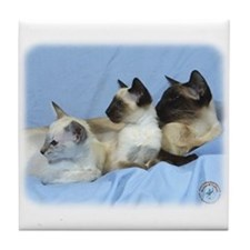 Siamese Cat 9W055D-074 Tile Coaster