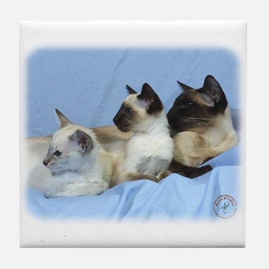 Siamese Cat 9W055D-074 Tile Coaster