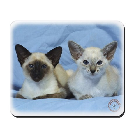 Siamese Cat 9W055D-100 Mousepad