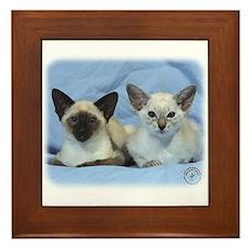 Siamese Cat 9W055D-100 Framed Tile