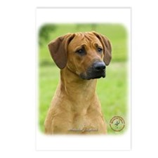 Rhodesian Ridgeback 9M044D-24 Postcards (Package o