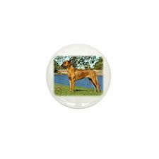 Rhodesian Ridgeback 9P017D-287 Mini Button (100 pa