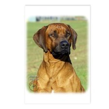 Rhodesian Ridgeback 9P017D-317 Postcards (Package