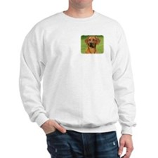 Rhodesian Ridgeback 9Y086D-111 Sweatshirt