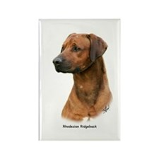Rhodesian Ridgeback 9Y338D-041 Rectangle Magnet