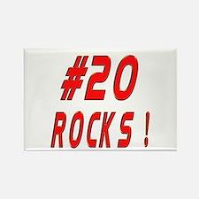 20 Rocks ! Rectangle Magnet