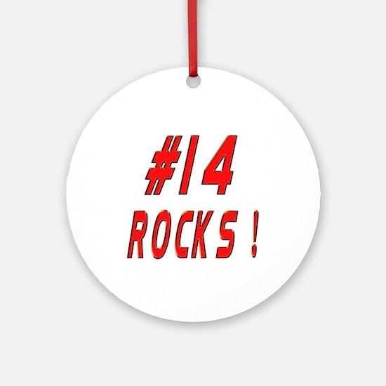 14 Rocks ! Ornament (Round)