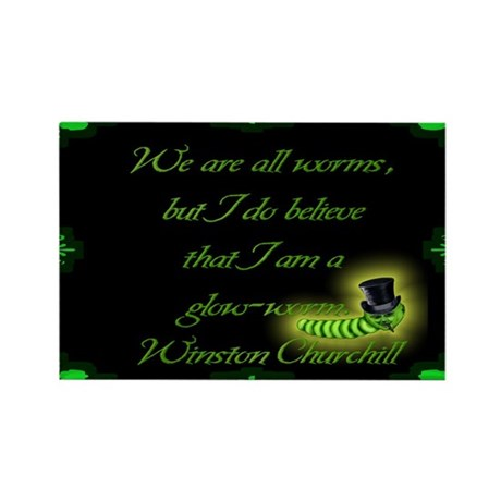 Winston Churchill Quote Rectangle Magnet (10 pack)