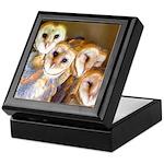 Third Clutch Owlets Keepsake Box