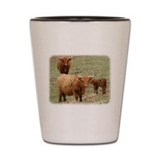 Highland Cattle 9Y316D-017 Shot Glass