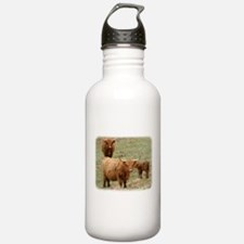Highland Cattle 9Y316D-017 Sports Water Bottle
