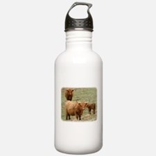 Highland Cattle 9Y316D-017 Water Bottle