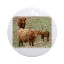 Highland Cattle 9Y316D-017 Ornament (Round)