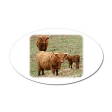 Highland Cattle 9Y316D-017 22x14 Oval Wall Peel