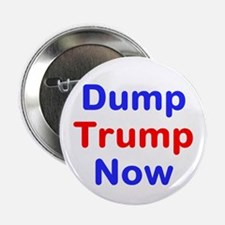 "Dump Trump Now 2.25"" Button"