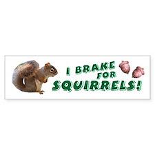 """""""I Brake for Squirrels"""" Bumper Car Sticker"""