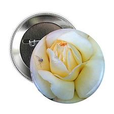 Soft Rose Button