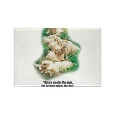 Cute Clumber spaniel Rectangle Magnet