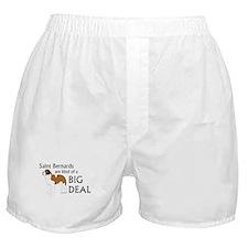 Saints are a Big Deal Boxer Shorts