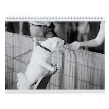 Forever Home - 2011 Calendar