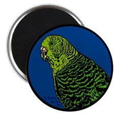 Parakeets and Budgies Bird Magnet