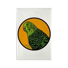 Parakeets and Budgies Magnets (100 pack)