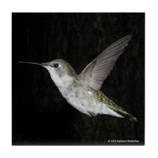 Funny Hummers Tile Coaster