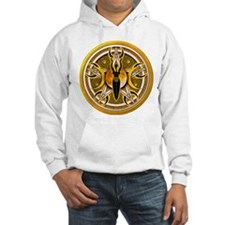 Pentacle of the Yellow Goddes Hoodie