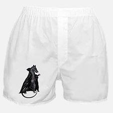 Vampyre Rats Boxer Shorts