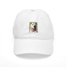 Funny Pit bull Baseball Cap