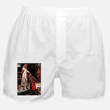 The Accolade Husky Boxer Shorts