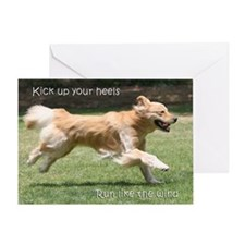 Golden Retriever Birthday Card 'Run'