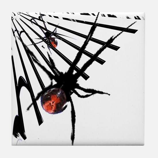 Redback Spider in Web Tile Coaster
