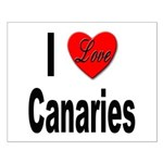I Love Canaries Small Poster