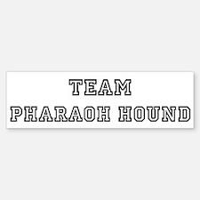 Team Pharaoh Hound Bumper Bumper Bumper Sticker