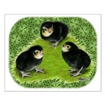 Baby Chicks in the Garden Small Poster