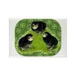 Baby Chicks in the Garden Rectangle Magnet (100 pa