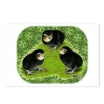 Baby Chicks in the Garden Postcards (Package of 8)