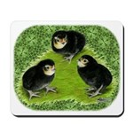 Baby Chicks in the Garden Mousepad